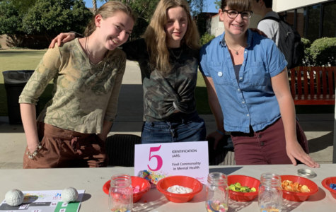 Do You Mind? Prowler Editors Share dTHS Mental Health Fair 2019 Experiences